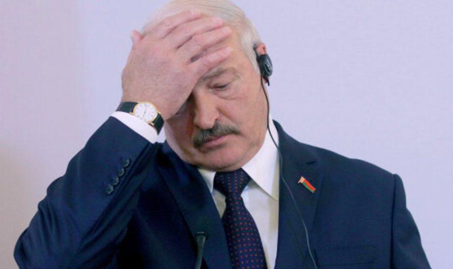 Лукашенко о ситуации с коронавирусом в Беларуси: нет причин для паники