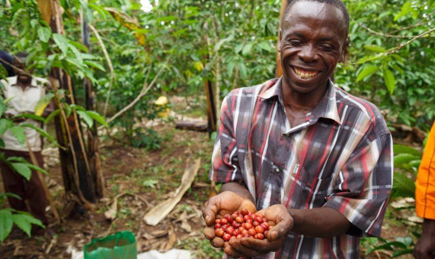 Уганда жертвует еду уязвимым людям во время локаута