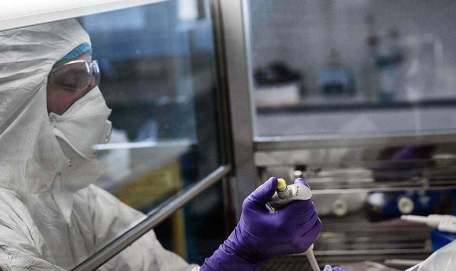 ВОЗ добавляет 9 кандидатов на вакцину против Covid-19